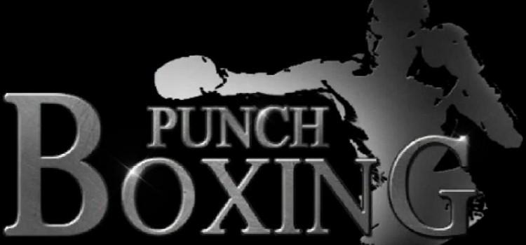 Punch Boxing 3D на пк